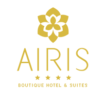 airis-logo-assist1-2020